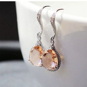 Pretty Cubic Zircon Gifts 925 Silver Drop Earrings